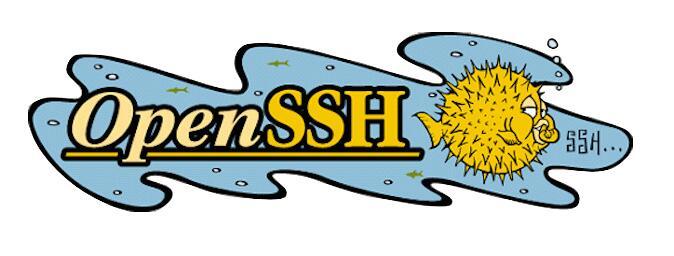 漏洞预警:OpenSSH 出现远程执行代码漏洞